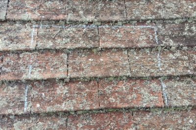 tile-roof-before-cleaning